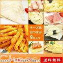【送料無料】チーズ系おつまみとことん9品セット!