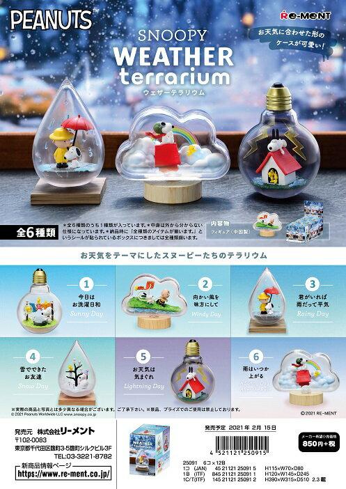 コレクション, その他  SNOOPY WEATHER Terrarium 6 1BOX