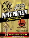GOLD'S GYM(ゴールドジム)ホエイプロテイン チョコレート風味360g |プロテインサプリメント プロテイン 溶けやすい 健康食品 たんぱく質 タンパク質 筋力 ホエイ golds gold ビタミン ペプチド アミノ酸 BCAA bcaa WPI wpi