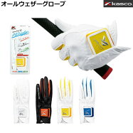キャスコ 全季節全天候対応グローブ オールウェザー 左手装着用 SF-1716