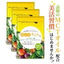 MCT MCTオイル サプリ 麹 ダイエット サプリ コンブチャ 中性脂肪酸 イヌリン カルニチン キャンドルブッシュ サプリメント ケトン体 健康食品 133種類の植物酵素 30日 3個セット 送料無料 その1