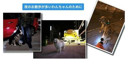 【楽天ランキング1位獲得】お散歩 リード 〜60kg 最長8M 中型犬 大型犬 用 伸縮リード 自動巻き 犬用 大型 中型 懐中電灯 LEDライト