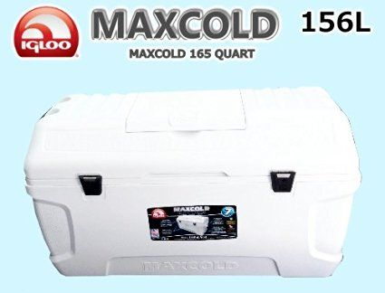 イグルー大型クラーボックス165QT(156L)マックスコールドプレミアムMAXCOLD【クーラー...