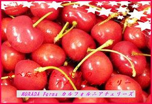 COSTCO カークランドシグネチャーとても大粒で甘いアメリカンチェリー【お買い得品】アメリカン...