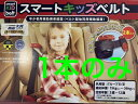 オリジナルカラーシートベルトラウム TOYOTA RAUM NCZ20.25 2003年05月〜