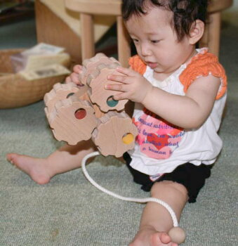 六輪車(歯車タイプ)日本グッド・トイ委員会認定おもちゃ選定玩具
