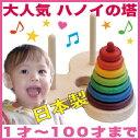 日本グッド・トイ委員会選定玩具 知育に最適な手と頭を使う木のおもちゃ 日本製♪【名入れ可】...