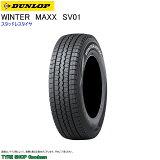 DUNLOP・WINTER・MAXX・SV・01