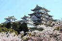 1000ピースジグソパズル、木製パズル、咲く桜と宮殿、ためのレジャーおもちゃ、DIYパズル楽しいゲーム、友達同士のギフト