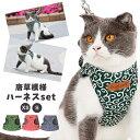猫 ハーネス リード 軽量 首輪 胸あて式 猫の服 胸背ハーネス付き 牽引ロープ ペット セット かわいい ...