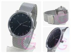 SKAGEN(スカーゲン)SKW6175HALD/ハルドステンレスメッシュベルトシルバーメンズウォッチ腕時計