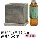 セメントプランター 植木鉢 おしゃれ キューブ型 15cm 〔受皿付〕...