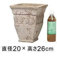 リーフデザイン角型アンティーク素焼き鉢RV20cm