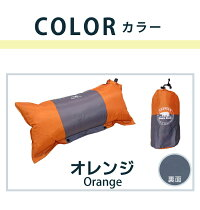 pillow7302_color_or