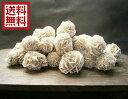 【楽天売上 NO1】砂漠のバラ デザートローズ 500g量り売りセレナイトローズ メキシコ産 【送料無料】