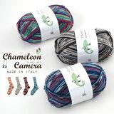 【677】Chameleon Camera(カメレオン カメラ)[毛(防縮ウール)75%ナイロン25% 合細 95-100g玉巻(約420m) 全15色]毛糸ピエロ♪ 毛糸 編み物 手