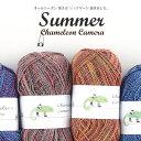 【830】Chameleon Camera Summer(カ...
