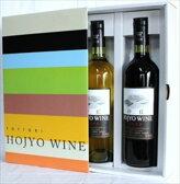 北条ワイン 砂丘 赤白 ギフトセット 鳥取 ワイン ギフト お歳暮 父の日 お中元 プレゼント用におすすめ
