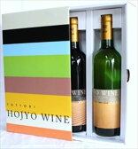 北条ワイン ヴィンテージ 赤白 ギフトセット 鳥取 ワイン ギフト お歳暮 父の日 お中元 プレゼント用におすすめ