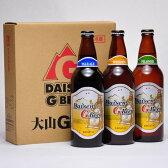 世界一のビール 大山Gビール 500ml ×3本セット 要冷蔵 鳥取県産 地ビール WBA 世界第1位 代引不可 ギフト お歳暮 父の日 お中元 プレゼント用におすすめ