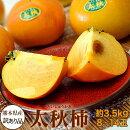 柿かき甘柿熊本県産太秋柿産地箱訳あり品8〜14玉約3.5kg送料無料