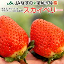 いちご栃木県産「スカイベリー」1箱DX(デラックス)約450g(8〜12粒)※冷蔵