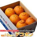 送料無料熊本県産デコポン約1.2kg(4〜6玉)【3箱買えば1箱オマケ】※常温