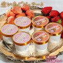 アイス氷菓苺イチゴ『生いちごジェラート』白いちご・さがほのか2種各3個合計6個セット1個:110ml冷凍送料無料