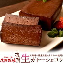 ケーキチョコレート花畑牧場濃厚生ガトーショコラ480g×2本セット業務用プレゼントおやつチョコケーキ冷凍同梱可能