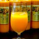 ギフト ジュース シーベリー サジー 100%果汁 北海道産 希釈タイプ無糖 300ml×9本 贈り物 セット ドリンク 飲み物 栄養 健康 送料無料 1