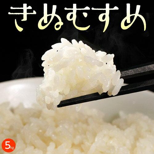 《送料無料》岡山県産米 「きぬむすめ」 白米 10kg(5kg×2袋) ※常温【同梱...