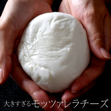チーズ 訳あり イタリア産 水牛乳入り 『モッツァレラ チーズ』250g以上×3個 おつまみ 冷凍食品 ピザ ピッツァ 料理 パーティ オードブル 冷凍 同梱可能☆