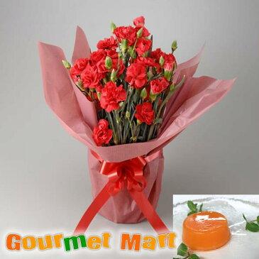 先行予約 早期割引実施中 母の日!カーネーション5号鉢植え(鉢花)&夕張メロンピュアゼリーをラッピングしてお届けいたします!