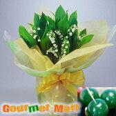 すずらん鉢植え4.5号鉢8本植え(鉢花)&まりも羊羹をラッピングしてお届けいたします!