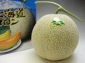 北海道産 赤肉メロン!良品1.3kg 1玉