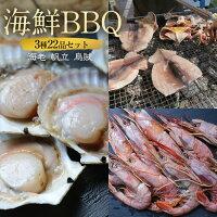 【送料無料】海鮮バーベキューセット(3種42品)赤海老10尾/ホタテ20枚/イカ一夜干2枚(5〜7人前)