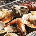 海鮮 バーベキューセット BBQ(3種22品)赤海老10尾/...