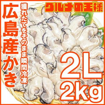 広島産 カキ 牡蠣 2kg 1kg×2 むき身 大粒 2Lサイズ 殻剥き不要&小さくなりにくい加熱用で濃厚な風味!【冷凍 生牡蠣 かき カキ 牡蛎 牡蠣鍋 カキフライ 牡蠣フライ 築地市場 ギフト】【smtb-T】r