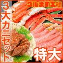 【送料無料 特大3大カニセット】タラバガニ 5L 1kg 1...