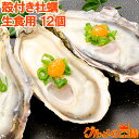 【送料無料 生牡蠣 殻付き 生食用カキ】生牡蠣 12個入り ...