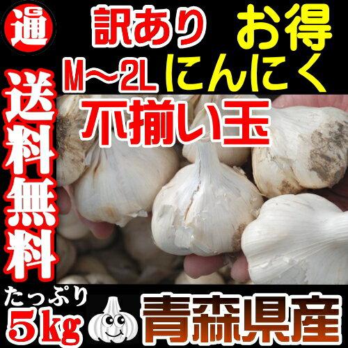 にんにく 青森県産 1kg×5 送料無料 訳あり M-2L 不揃い玉 (こちらの商品は白にんにくです) にんに...