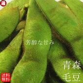 毛豆青森県産枝豆在来毛豆送料無料