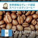 グァテマラ世界規格Qグレード珈琲豆(300g)(ガテマラSHB)/グルメコーヒー豆専門加藤珈琲店/珈琲豆
