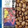 ブラジルカップオブエクセレンス(100g)/珈琲豆