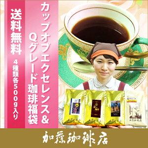 9年連続ショップオブザイヤー受賞!最高級のコーヒー/コ-ヒ- 本当に美味しい珈琲です♪◎カッ...