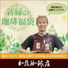 新緑の珈琲福袋[お菓子・春・夏/各500g] グルメコーヒー豆専門加藤珈琲店