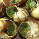 伝統的なブルゴーニュ風エスカルゴを簡単調理でお楽しみ頂けます。【2パックセット!】フランス...