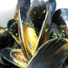 ムール貝 /アイルランド産ムール貝 1Kg入りムール貝 冷凍ムール貝