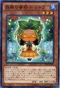 じぃぱわーず楽天市場支店で買える「森羅の蜜柑子 シトラ ノーマル 水属性 レベル3 EP14-JP022【遊戯王カード】」の画像です。価格は32円になります。