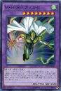 M・HERO カミカゼ スーパーレア SD27-JP043 風属性 レベル8【遊戯王カード】
